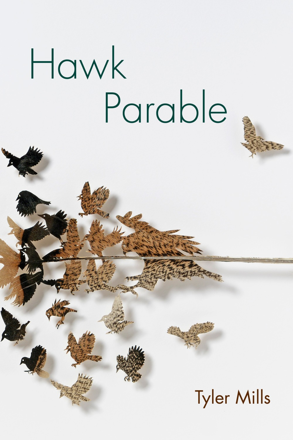 Hawk Parable Cover